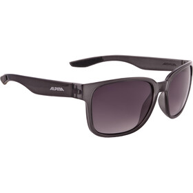 Alpina Darcon Glasses smoke transparent